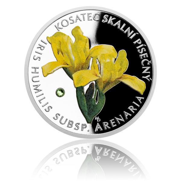 Stříbrná mince Ohrožená příroda - Kosatec skalní písečný proof