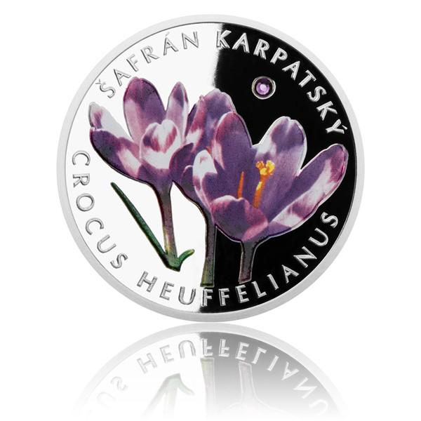 Stříbrná mince Ohrožená příroda - Šafrán karpatský proof