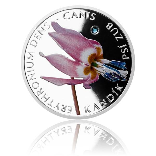 Stříbrná mince Ohrožená příroda - Kandík psí zub proof