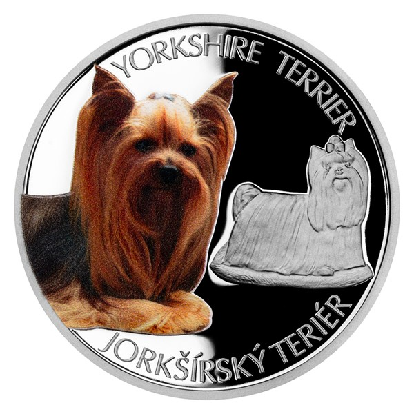Stříbrná mince Psí plemena - Jorkšírský teriér proof