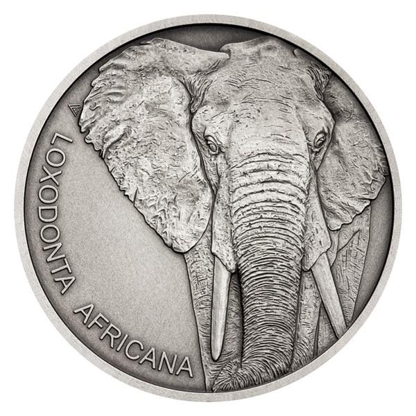 Stříbrná mince Zvířecí rekordmani - Slon africký stand