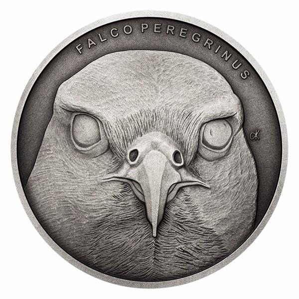 Stříbrná mince Zvířecí rekordmani - Sokol stěhovavý stand